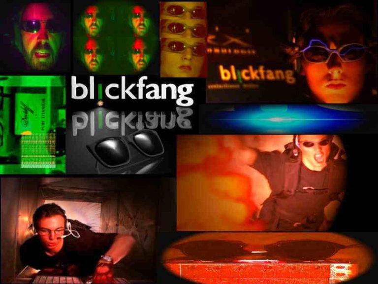 Blickfang Collage